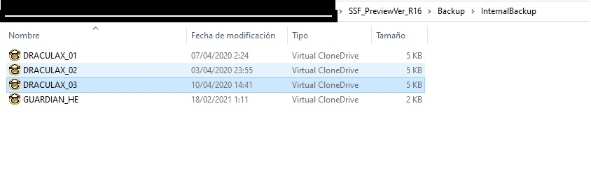 memory-SSF.jpg